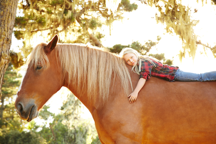 Don't Horse Around Plymouth MN - Get A Cosmetic Dentist